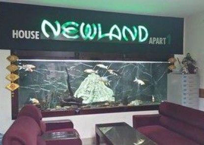 Newland Studio Apartment 1