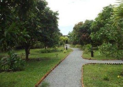 Oasis Garden Guesthouse