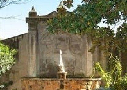 Occidental Aurelia