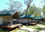 Pesan Kamar Rumah Pohon (safari Palm) di Ocean Beach Resort & Holiday Park