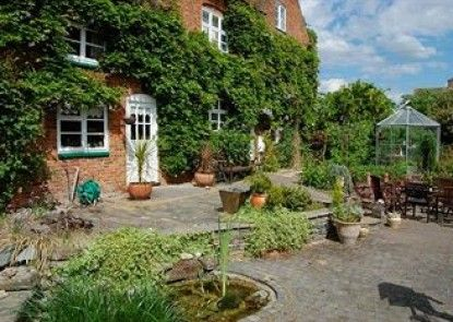 Old Ivy House Bed & Breakfast