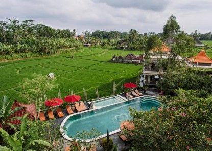 Om Ham Retreat and Resort Kolam Renang