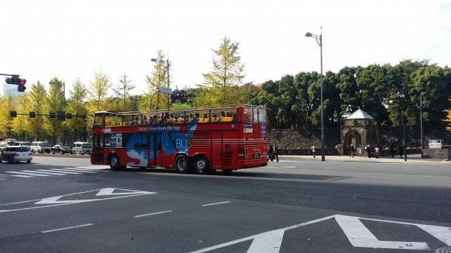 One-day Sky Hop-on, Hop-off Sightseeing Bus