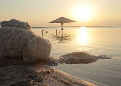 Orchid Dead Sea