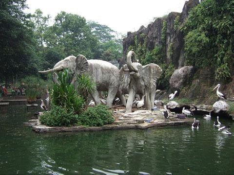 Kebun Binatang Sriwijaya