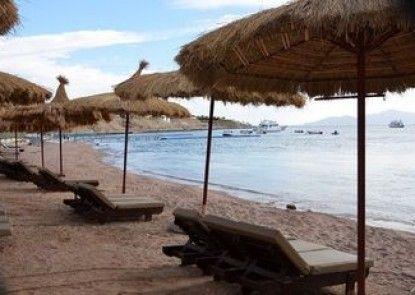 Palmyra Resort