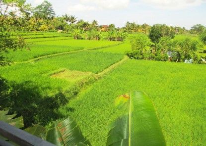 Panorama Ubud Private Villa