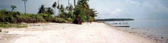 Tanjung Bugis Beach