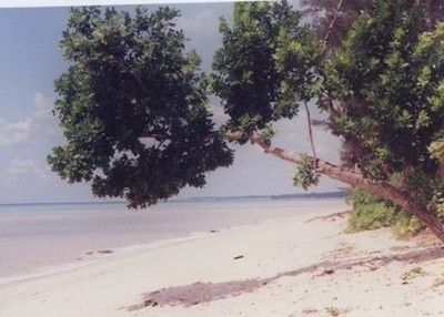 Pantai Tanjung Langka