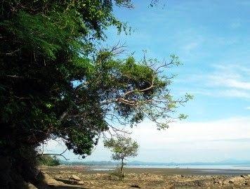 Pantai Ujung Kupang