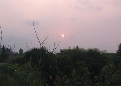 Paradise Park Laemchabang
