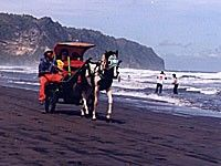 Hotel dekat Pantai Parangtritis