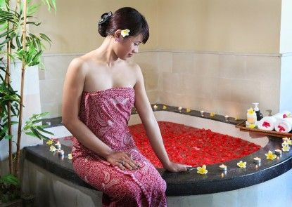 Park Hotel Nusa Dua Suites Spa