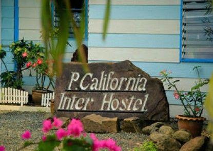 P California Inter Hostel
