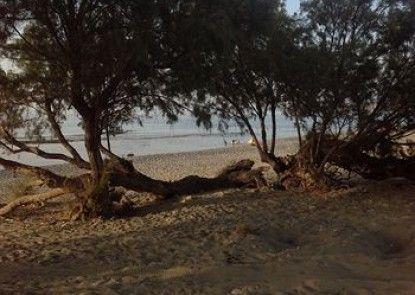 Petras Beach