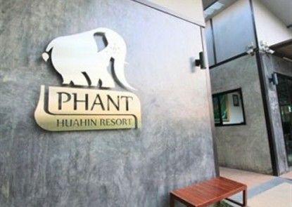 Phant Hua Hin Resort