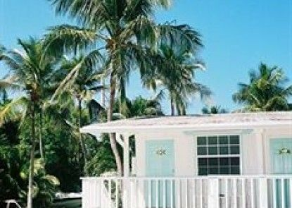 Pines & Palms Resort Teras