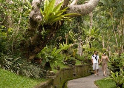 Pita Maha Resort and Spa Sekitarnya