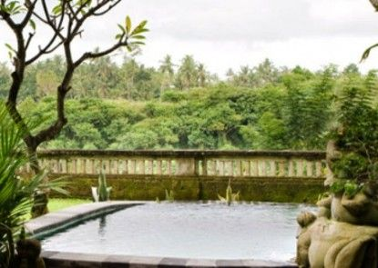 Pita Maha Resort and Spa Kolam Renang Pribadi