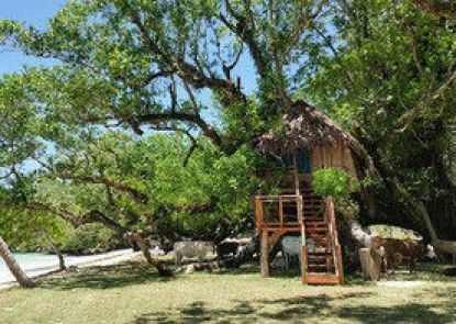 Port Olry Tree House Bungalow