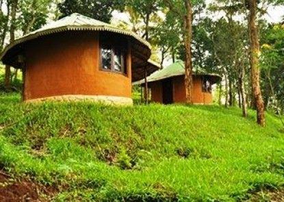 Punarjani Ayurvedic Resorts