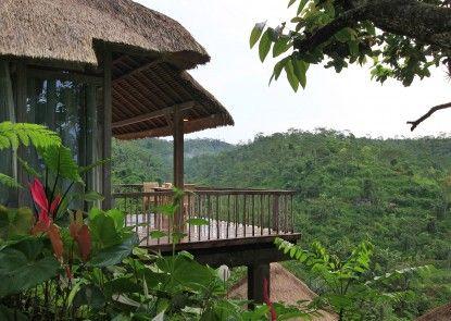 Puri Sebatu Resort Ubud Pemandangan