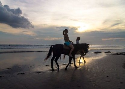 Puri Wisata Balinese Style Hotel Teras