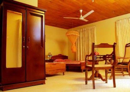 Rainforest Lodge