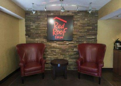 Red Roof Inn Chicago - Joliet