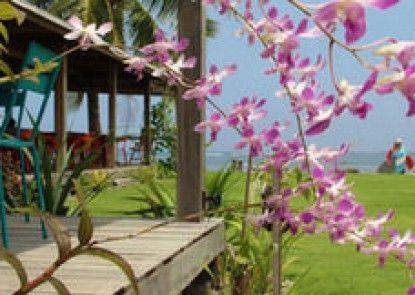 Reef Beach Resort