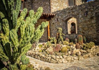 Relais Garden Cactus B&B
