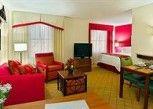 Pesan Kamar Studio, 1 Tempat Tidur Queen di Residence Inn By Marriott Tampa Downtown