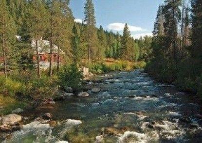 Resort at Squaw Creek Studio 806