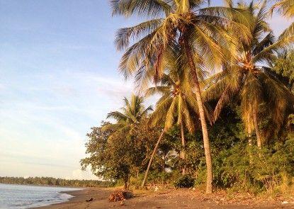 Rinjani Beach Eco Resort Pantai
