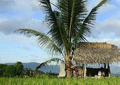 Sanak Retreat Bali Pemandangan