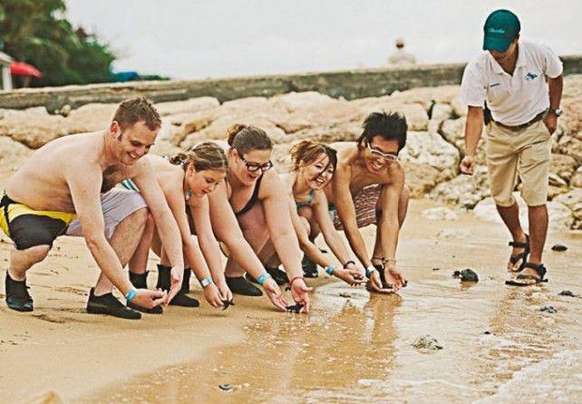 Sanur Beach Sea Walking