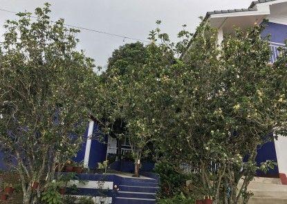 Shin Sane Guesthouse