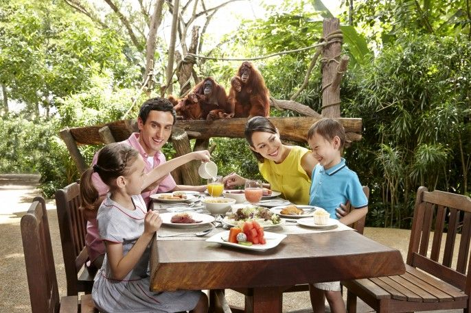 harga tiket Singapore Zoo: Admission with Tram Rides and Jungle Breakfast with Wildlife