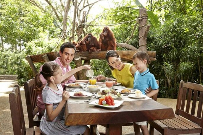harga tiket Singapore Zoo E-Tickets with Unlimited Tram Ride