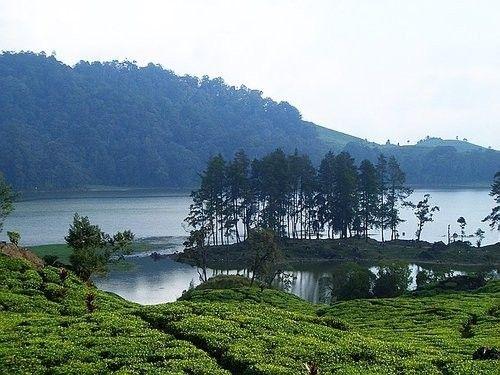 Situ Patengang