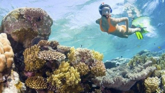 Snorkelling Experience at the Gili Islands