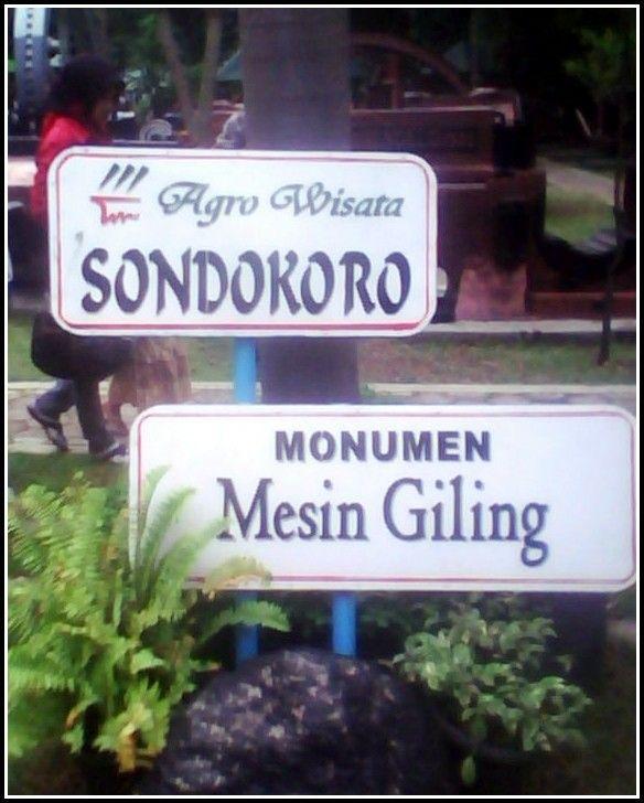 Agrowisata Sondokoro