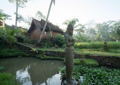 Song Broek Jungle Resort Pintu Masuk