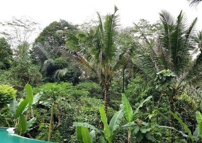 Song Broek Jungle Resort Memorabilia