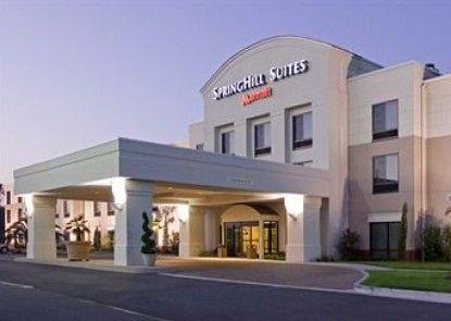 Springhill Suites Dallas Plano/frisco Teras