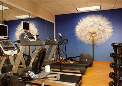 SpringHill Suites by Marriott Atlanta Buford