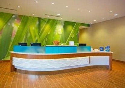Springhill Suites by Marriott Pittsburgh Mt. Lebanon