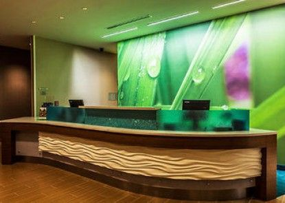 SpringHill Suites Philadelphia Valley Forge/King of Prussia