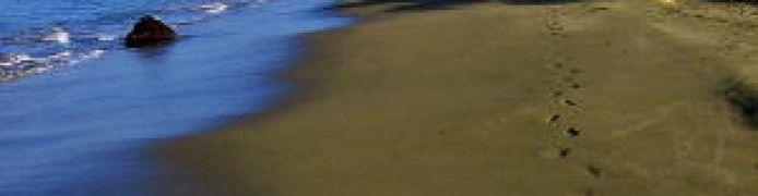 Suak Ribee Beach