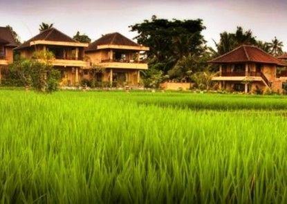 Sri Bungalows Ubud Pemandangan